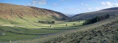 Yorkshire Walks and Wildlife Magazine. Yorkshire Uk, Photo Essay, Homeland, Beautiful Landscapes, Britain, Golf Courses, Wildlife, Walking, Magazine