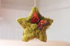 Dandelions on the Wall: Woodland-Inspired Christmas Stars