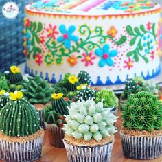 These succulent cupcakes complete the fiesta-themed party Mexican wedding cupcakes Fiesta Theme Party, Taco Party, Festa Party, Party Themes, Party Ideas, Fiesta Party Foods, Mexico Party Theme, Mexican Fiesta Cake, Mexican Party