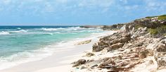 Welcome to Salt Cay, Turks and Caicos Islands! >> Cannot wait!