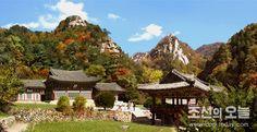 금강산의 단풍계절 (1)-《조선의 오늘》