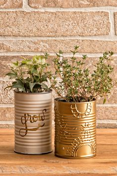 17 DIY recycled tin can crafts – Finest 10 Ideas Diy Upcycled Planters, Diy Planters Outdoor, Recycled Tin Cans, Upcycled Crafts, Paint Can Planters, Tin Can Lanterns, Recycle Cans, Tin Can Crafts, Decoration