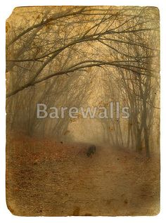 Art Print of Foggy landscape. Old postcard, design in grunge and retro style. Search 33 Million Art Prints, Posters, and Canvas Wall Art Pieces at Barewalls. Old Postcards, Retro Fashion, Canvas Wall Art, Art Pieces, Art Prints, Landscape, Poster, Painting, Design