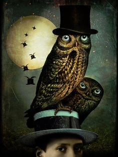 Catrin Welz-Stein Watch Out