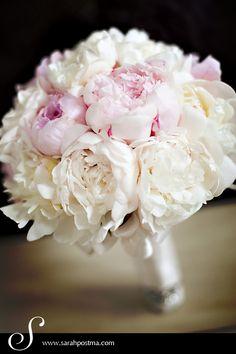 Wedding bouquet of peonies. I love peonies! Gardenia Bouquet, Peonies Bouquet, Hydrangea Bouquet, Boquet, Pink Bouquet, Hydrangeas, Spring Wedding Flowers, White Wedding Bouquets, Bouquet Wedding
