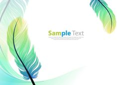 Feathers frame decoration vector background