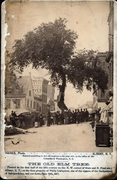 chopping down of the old elm tree that stood at corner of state and pearl