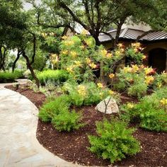 Texas Hill Country Lanscapes Without Lawns Google Search Nannymom3 Landscape Ideas