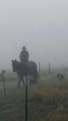 Foggy morning in Lapwai ID