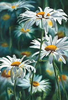 Shasta Daisy Fine Art Reproduction Watercolor Paper by daisies illustration Easy Watercolor, Watercolor Flowers, Watercolor Paper, Watercolour Paintings, Watercolor Portraits, Abstract Watercolor, Watercolor Illustration, Art Floral, Floral Prints
