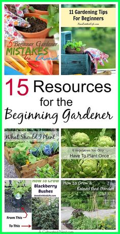 15 Resources For The Beginner Gardener - Want to start a vegetable garden but don't know where to start? Check out this post!