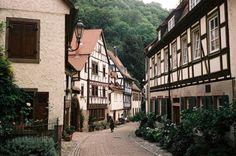 21vines:  Weinheim … (by alf sigaro)