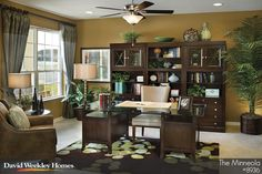 This office uses a full wall unit and bold rug in dark and light colors. Plants are used to soften and add greens.