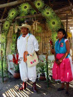 DANZA EN LA WEB, LABORATORIO DE RECOPILACION DE LA DANZA U. de G.: LOS TOTONACAS
