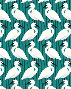 Pattern Design - Esther Lara