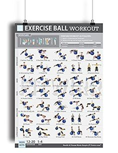 """Tone & Tighten Home/Gym Posters Set of 5 Exercise Charts 19""""x27"""" NOW LAMINATED + (FREE 8-Minute Abs Workout Poster 12""""x18"""" Included) - Fitness Programs for Women - Personal Trainer Approved Workouts"""