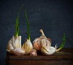 GARLIC Still Life Photography, Food Photography, Exposition Photo, Apple Painting, Vegetables Photography, Modern Food, Still Life Fruit, Still Life Photos, Nature Drawing
