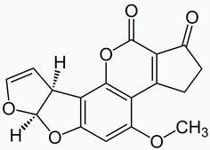 Durch Nüsse gelangte Aflatoxin B1 in Brotaufstrich - nicht zum ersten Mal und wohl auch nicht zum letzten. Dabei ist das Pilzgift einer der krebserregen...