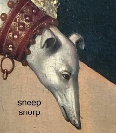Sneep snorp doggo of the dark ages lol All Meme, Stupid Funny Memes, Hilarious, Memes Humor, Reaction Pictures, Funny Pictures, Gavin Memes, Haha, Quality Memes