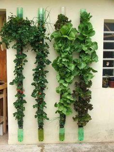 Vertical Garden Inspiration - The Backyard Farmer. Using plastic bottles!