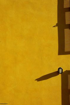 quenalbertini: Mustard Yellow by Paolo Luxardo Pho- tography Mellow Yellow, Orange Yellow, Mustard Yellow, Golden Yellow, Colour Schemes, Color Patterns, Jaune Orange, Minimal Photography, Aesthetic Colors