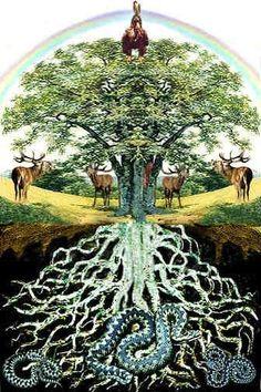 """Dans la mythologie nordique, le frêne est """"l'Arbre (du) Monde"""". Son vrai nom d'origine est Yggdrasil qui désigne le Dieu Odin. Son capital chance positif vibre à +0,4/3. C'est bien d'habiter près d'un frêne car il apporte chance et protection. Source:..."""