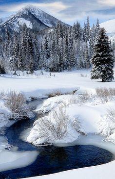 Big Cottonwood Creek, Wasatch Mountains at Cardiff Fork, Utah by utah images