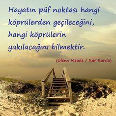 Kar Kurdu - http://kitap-pinarim.blogspot.com.tr/2013/11/kar-kurdu-glenn-meade.html#more