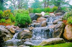 Waterfall created by Toine Pond Supplies in Tracy, CA. #WaterfallWednesday