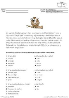Otis the owl - Students read the text about an owl called Otis and answer the multiple choice questions.