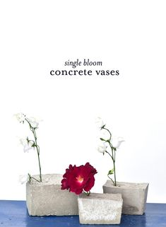 single bloom concrete vases | A Subtle Revelry - Would make very cute bookends!!