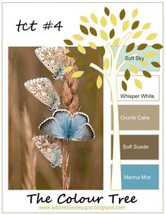 addINKtive designs: The Colour Tree #4 - Soft Sky, Whisper White, Crumb Cake, Soft Suede and Marina Mist