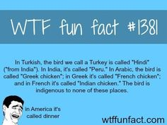 WTF Facts - Page 324 of 1045 - Funny, interesting, and weird facts Wow Facts, Wtf Fun Facts, True Facts, Funny Facts, Funny Memes, Random Facts, Hilarious, Crazy Facts, Random Trivia