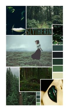 """Slytherin Aesthetic"" by lalalasprinkles ❤ liked on Polyvore featuring art"