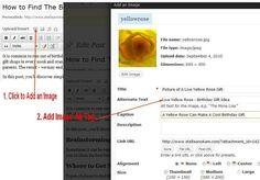 how to seo writing keywords - add image alt tag
