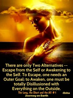 There are only Two Alternatives -- Escape from the Self or Awakening to the Self. To Escape, one needs an Outer Goal; to Awaken, one must be totally Disillusioned with Everything on the Outside. Osho : The Long, the Short and the All : Chapter 1 :  Knowledge Understanding