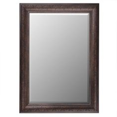 Tortoise Mirror, 32x44 | Kirkland's