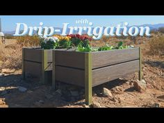 How To Make Self Watering Raised Planters / Garden Beds from Composite Decking - YouTube Deck Planter Boxes, Deck Planters, Planter Beds, Diy Planter Box, Raised Planter, Garden Boxes, Raised Garden Beds, Garden Ideas, Tower Garden
