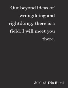"""Out beyond ideas of wrongdoing and rightdoing, there is a field, I will meet you there.""—Jalal ad-Din Rumi"