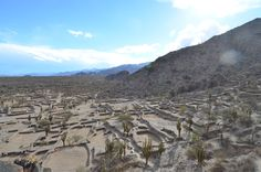 Sacred City of the Quilmes, near Cafayate, Argentina.