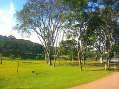Amanhecer no Parque São Lourenço...