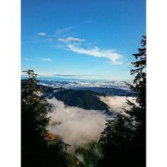 11月は雲海トップシーズン 日の出と共に湧き出でる雲海はいつ見ても心洗われます  #三峯神社  #三峰神社  #雲海  #秩父雲海  #mitsuminejinja  #seacloud  #chichibu mitsuminejinja
