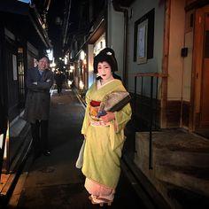 Geiko & Maiko — February 2017: Fresh Geiko Hisamomo (Tanmika...