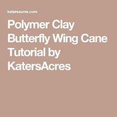 Polymer Clay Butterfly Wing Cane Tutorial by KatersAcres