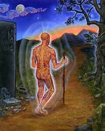 alex grey Nature of Mind