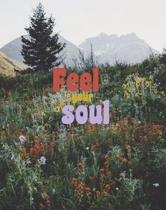Love Quotes feel your soul nature is part of Wallpaper quotes - Love Quotes QUOTATION Image As the quote says Description feel your soul nature Collage Mural, Photo Wall Collage, Wallpaper Quotes, Iphone Wallpaper, Hippie Wallpaper, Watch Wallpaper, 70s Aesthetic, Psy Art, Your Soul