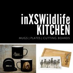 Wildlife Photography, Art Photography, Lettering, Kitchen, Artistic Photography, Cucina, Cooking, Fine Art Photography, Kitchens