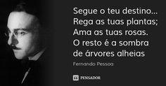 Segue o teu destino... Rega as tuas plantas; Ama as tuas rosas. O resto é a sombra de árvores alheias — Fernando Pessoa