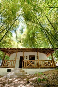 maybe just roof trusses and porch trim. Bamboo Architecture, Tropical Architecture, Bamboo House Design, Tiny House Design, Cabin Design, Cottage Design, Porch Trim, Raised House, Hut House