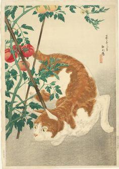 Brown Cat and Tomato Plant Takahashi Hiroaki (Shotei), Japanese cat art Illustrations, Illustration Art, Tama, Asian Cat, Cat Plants, Oriental Cat, Great Works Of Art, Japanese Cat, Bonsai Art